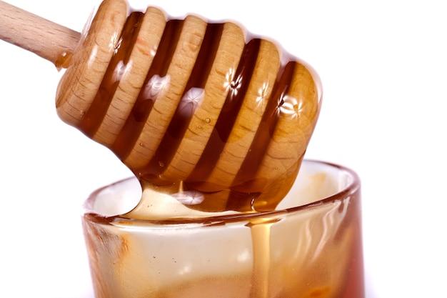 Ourse au miel