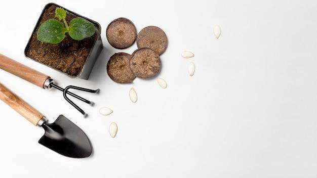 Outils de jardin, comprimés de tourbe pressée, semis de citrouille et ses graines d'en haut avec un endroit pour copier, bannière, affiche.