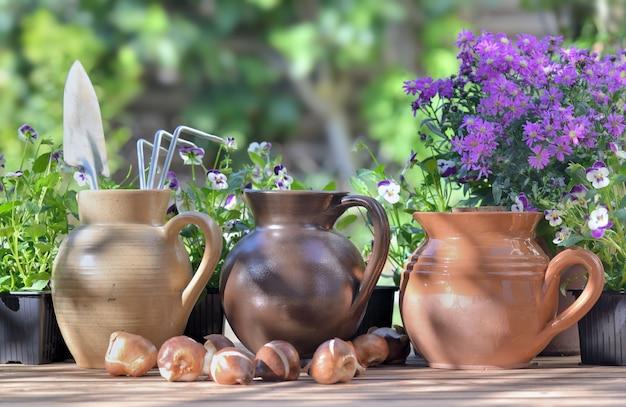 Outils de jardinage dans une cruche d'eau placée avec d'autres sur une table avec des fleurs et des bulbes dans le jardin