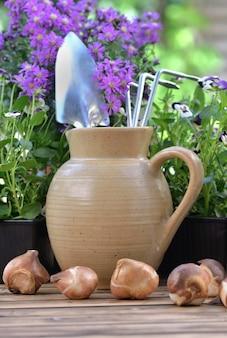Outils de jardinage dans une cruche d'eau placée sur une table avec des fleurs et des bulbes