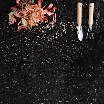 Outils de jardinage et feuilles sèches