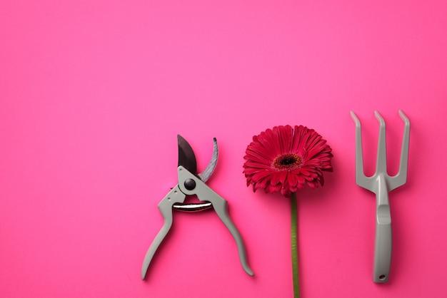 Outils de jardinage, fleur sur fond pastel rose punchy.