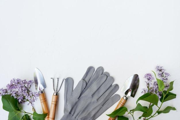 Outils de jardinage et fleur sur mur blanc avec espace copie