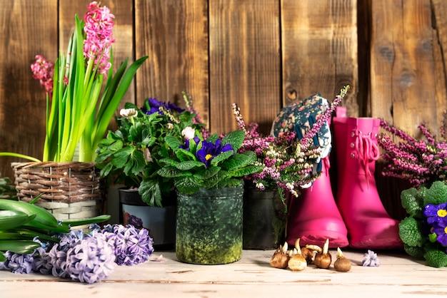 Outils de jardinage et fleurs dans les pots