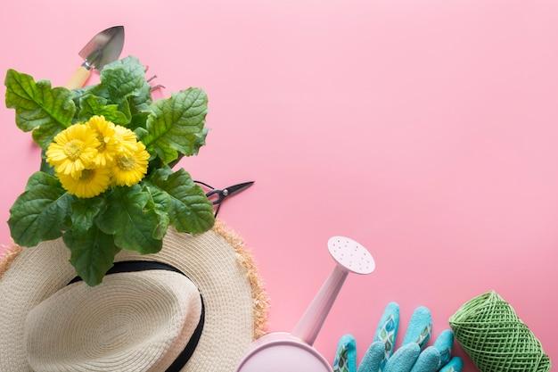 Outils de jardinage, fleurs jaunes sur rose. printemps et jardinage. vue de dessus. loisir. horticulture.