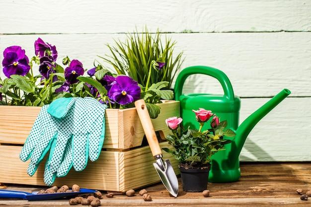 Outils de jardinage et fleurs sur la terrasse du jardin