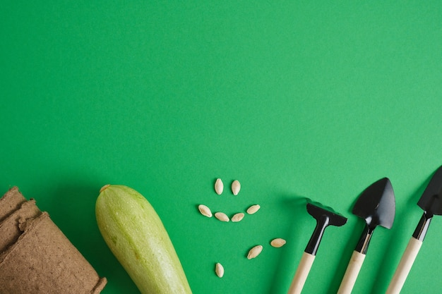 Outils de jardinage sur fond vert. petites pelles et râteaux pour planter des semis et des plantes d'intérieur, courgettes et courgettes changent sur fond vert