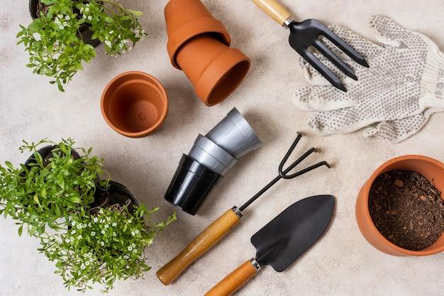 Outils de jardinage de plantes bouchent vue de dessus