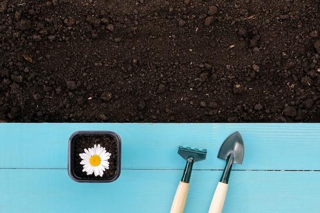 Outils de jardinage et terre pour débarquer des légumes ou des fruits