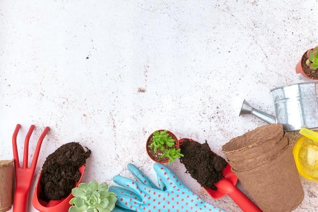 Outils de jardinage et vue de dessus, entretien du jardin