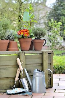 Outils de sertissage et fleurs en pot