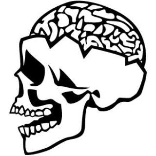 Ouverte du crâne et de l'illustration du cerveau