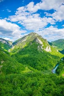 L'ouverture du paysage depuis le pont djurdjevic au nord du monténégro.