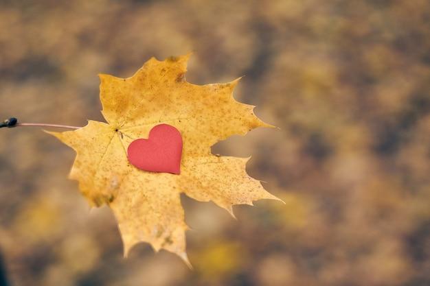 Ouvrez le symbole du cœur pur, copiez l'espace