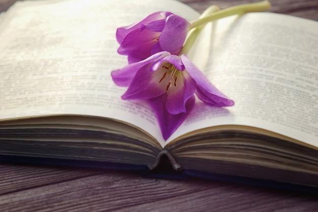 Ouvrez le vieux livre avec deux fleurs violettes