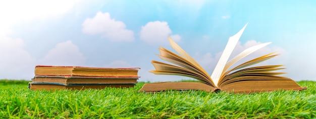 Ouvrir le livre sur l'herbe