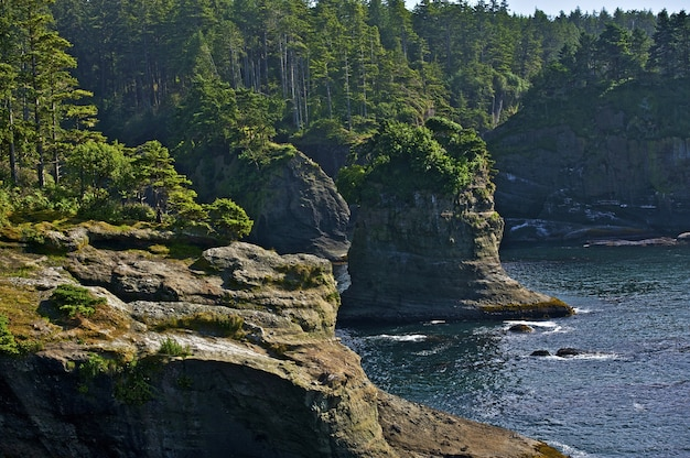 Pacific shore cliffs