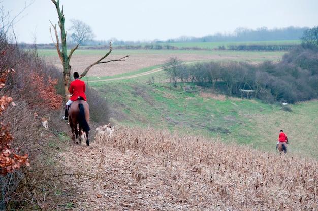 Pack de chasse dans un champ