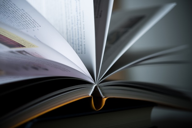 Page de connaissances du roman intellectuel intellectuel