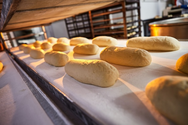 Pain de pâte crue sur une plaque de four avant la cuisson dans un four à la fabrication