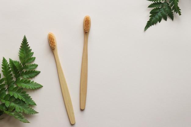 Paire de brosses à dents en bambou écologique sur fond beige clair avec des feuilles de fougère
