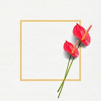 Paire de fleurs anthurium flamingo rouge foncé avec cadre jaune