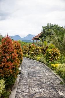 Palais d'eau de tirta gangga à bali, indonésie