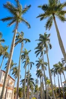 Palm beach royal, palm way, floride, états-unis