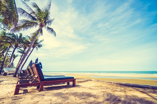 Palmier sable paysage paradis