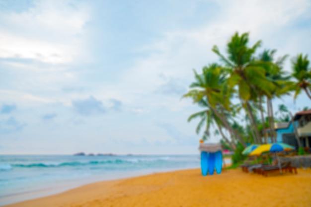 Palmiers sur la côte de l'océan.