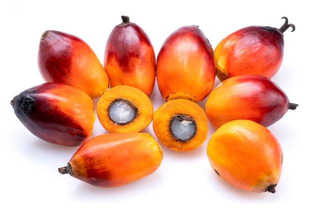 Palmiers à huile frais isolés sur une surface blanche