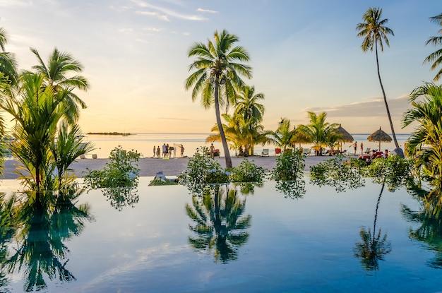 Palmiers sur une piscine à débordement sur la plage, polynésie française