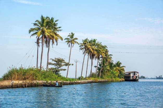 Palmiers pris sur les backwaters du kerala, inde