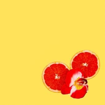 Pamplemousse et fleurs rouges art minimal. concevoir