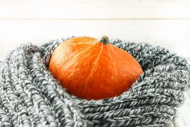 Pan pâtissière citrouille dans une écharpe chaude et confortable sur une table en bois blanche. récolte d'automne.