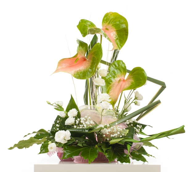 Panier d'anthurium essencia