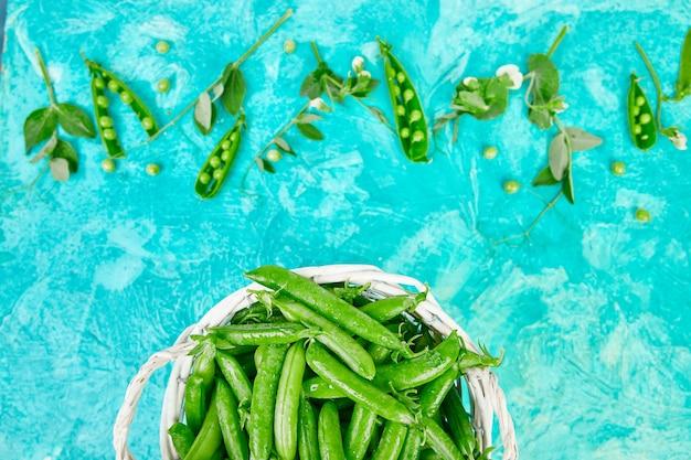Panier blanc avec des pois verts frais sur bleu.