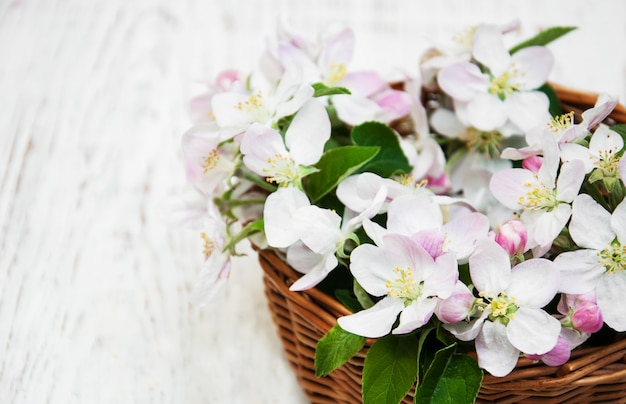 Panier avec des fleurs de pommier