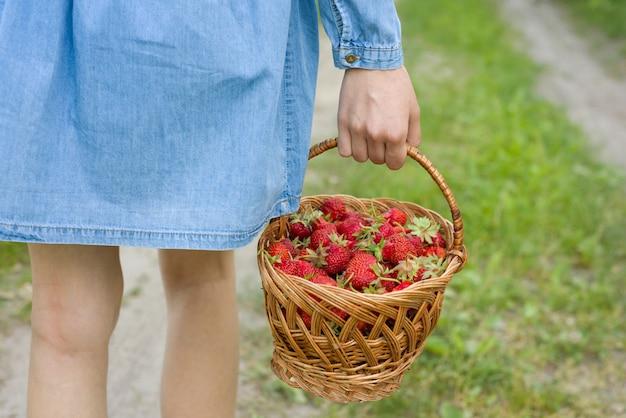 Panier avec des fraises dans la main d'une femme.