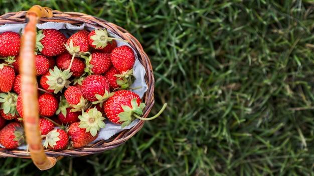 Panier de fraises savoureux plat poser