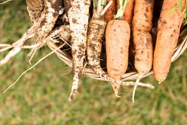 Panier de gros plan avec de délicieuses carottes de jardin