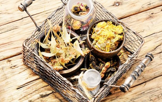 Panier avec des herbes médicinales
