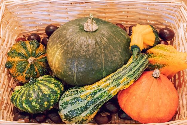 Panier en osier avec diverses citrouilles et châtaignes. récolte d'automne