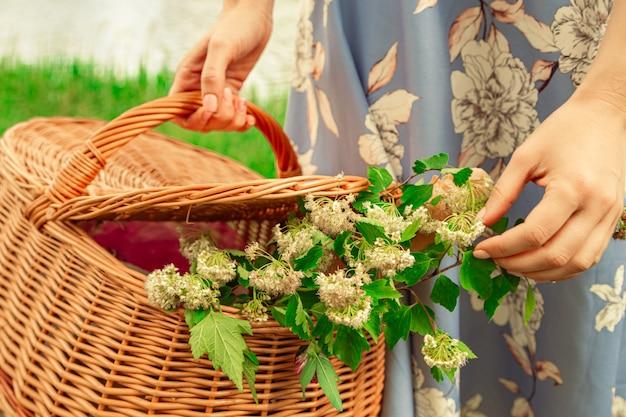 Panier pique-nique romantique pré blanc fleurs dans panier en osier close up part belle jeune femme
