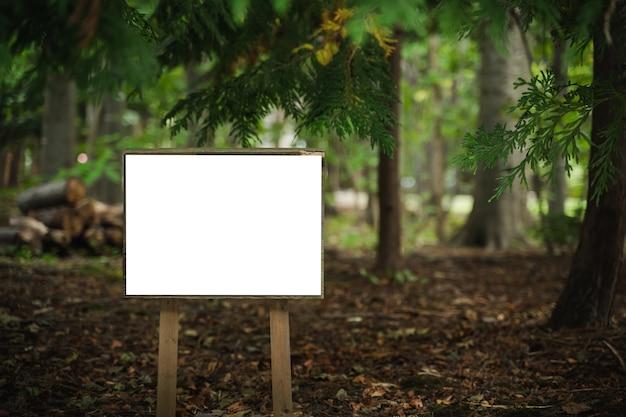 Panneau d'affichage en bois blanc vierge dans une forêt de pins pour votre publicité.