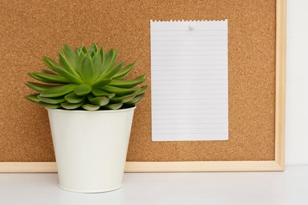 Panneau de liège. plante vivante vivante. page papier vide pour les notes.
