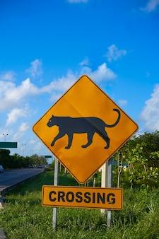 Panneau de signalisation panthère jaguar franchissant le mexique