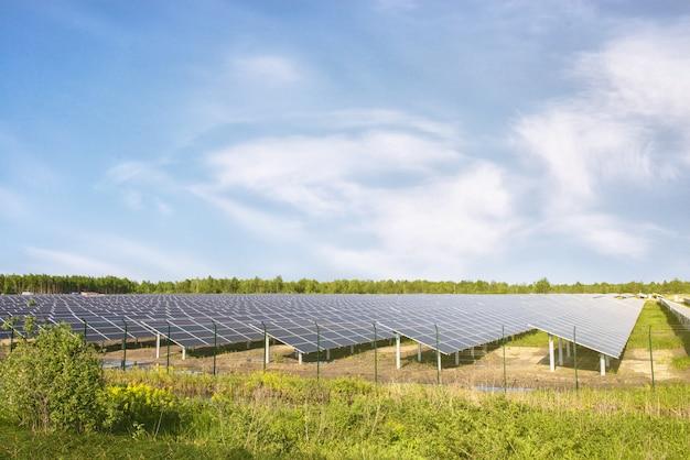 Panneaux solaires sous le soleil sur le terrain