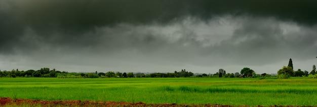 Panorama de gros nuages tempête de pluie sur le ciel au-dessus du champ de riz dans un nuage rural de pluie au-dessus de la colline