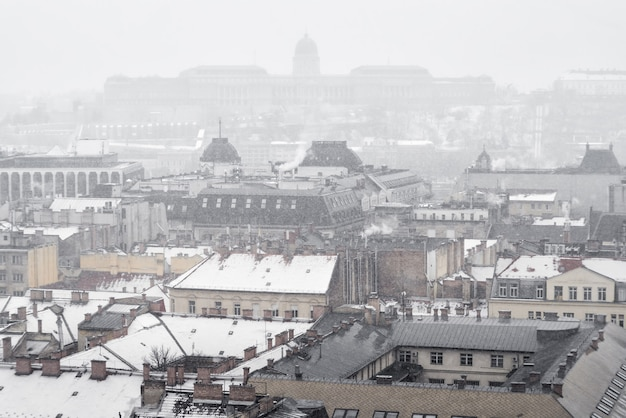 Panorama d'hiver de budapest